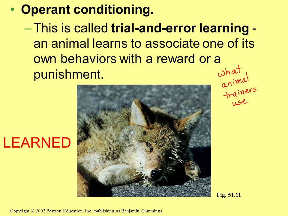 LEARNED Operant conditioning.