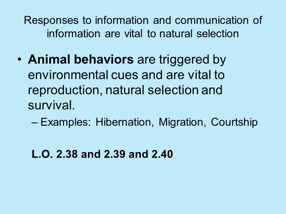 Responses to information and communication of information are vital to natural selection