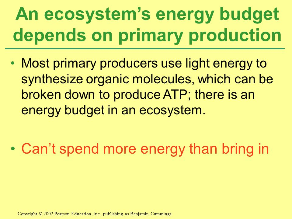 An ecosystem's energy budget depends on primary production