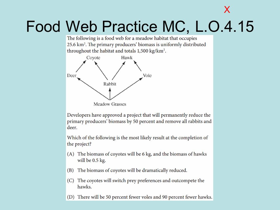 X Food Web Practice MC, L.O.4.15