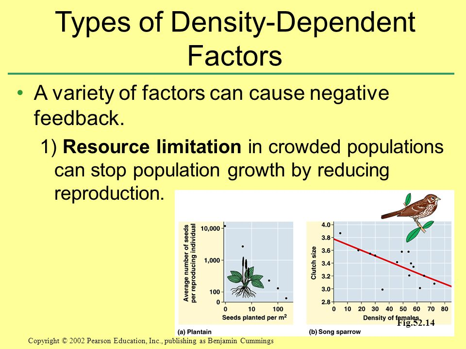 Types of Density-Dependent Factors