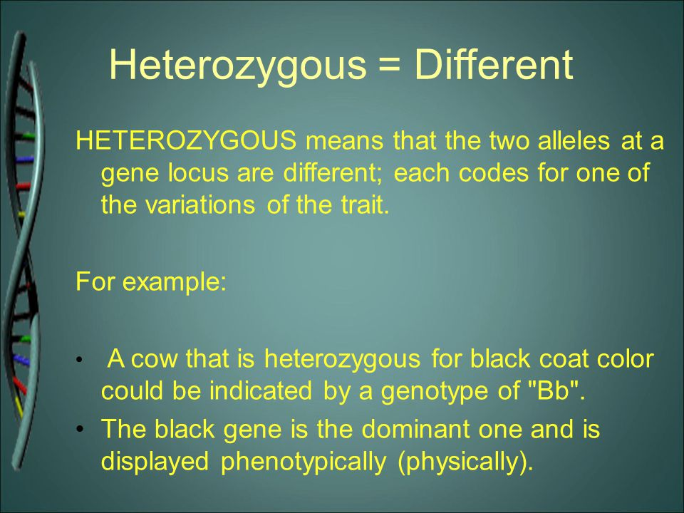 Heterozygous = Different