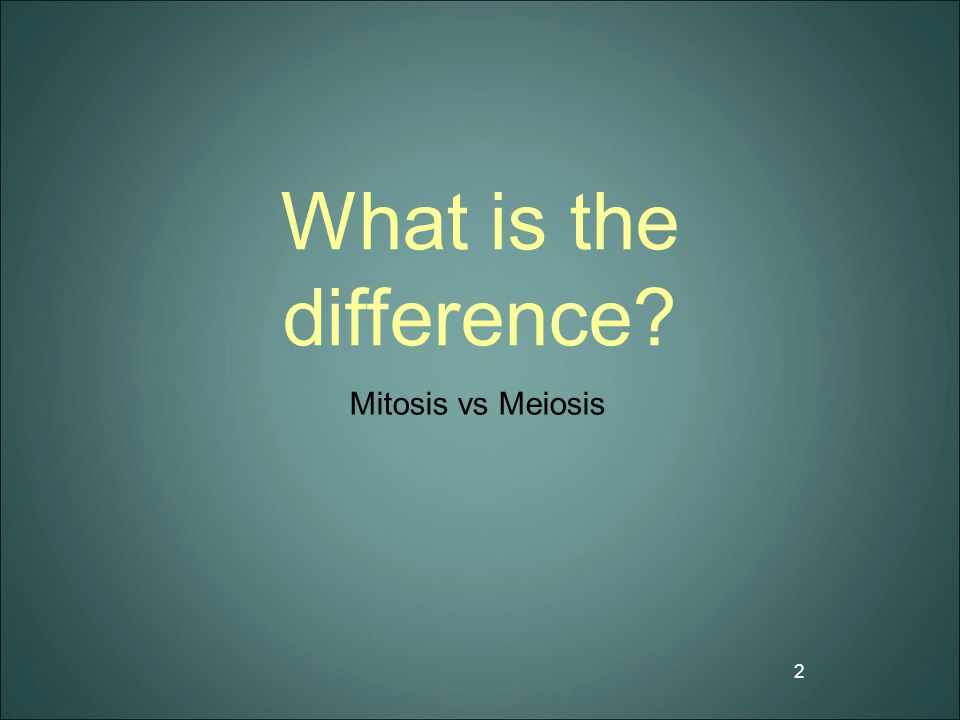 What is the difference Mitosis vs Meiosis
