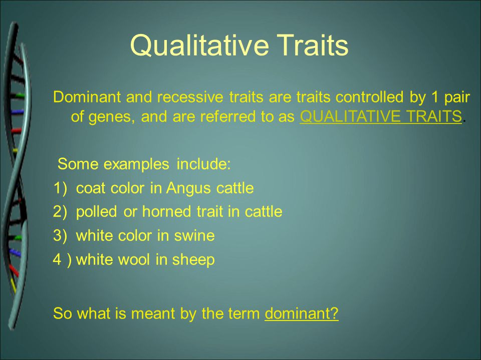 Qualitative Traits Dominant and recessive traits are traits controlled by 1 pair of genes, and are referred to as QUALITATIVE TRAITS.