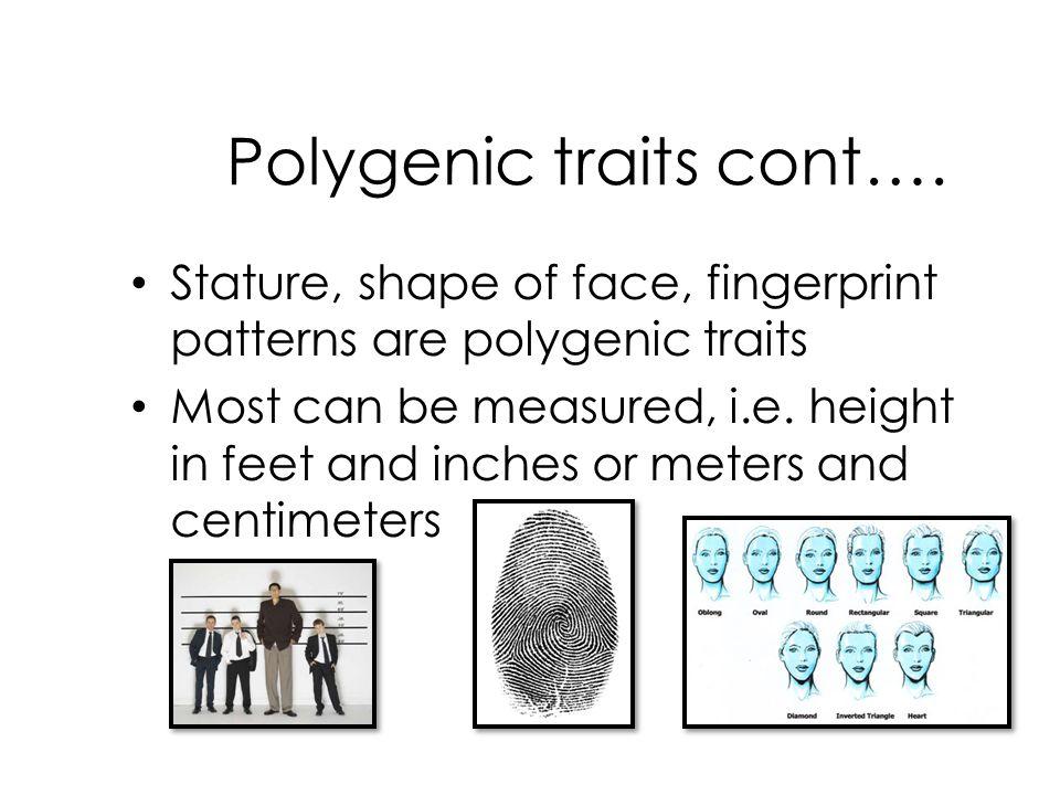 Polygenic traits cont….