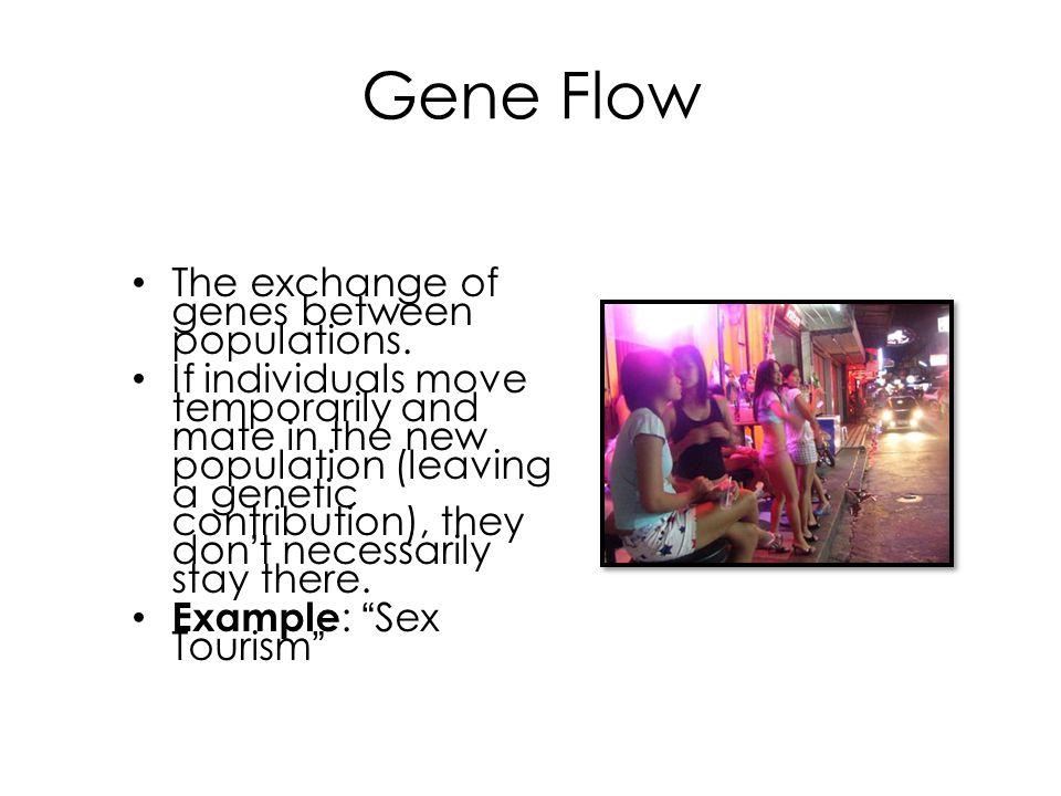Gene Flow The exchange of genes between populations.