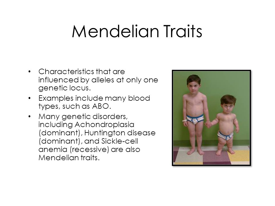 Mendelian Traits Characteristics that are influenced by alleles at only one genetic locus. Examples include many blood types, such as ABO.