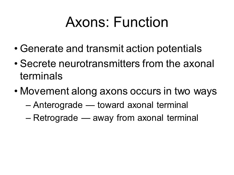 Axons: Function Generate and transmit action potentials