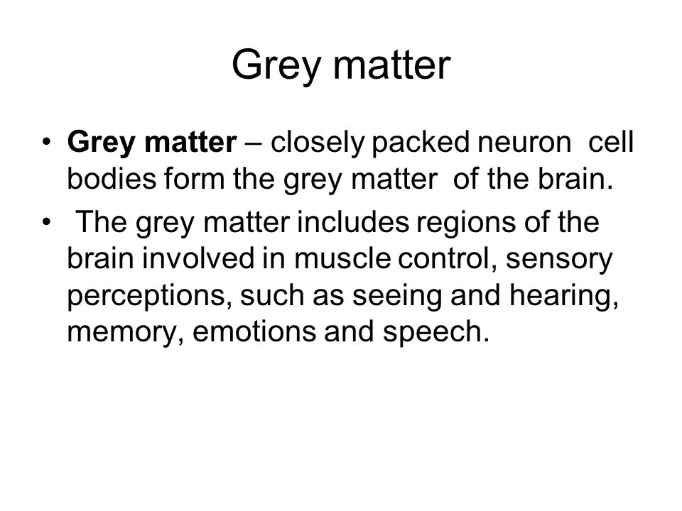 Grey matter Grey matter – closely packed neuron cell bodies form the grey matter of the brain.