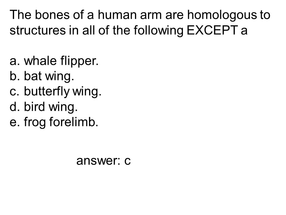 The bones of a human arm are homologous to