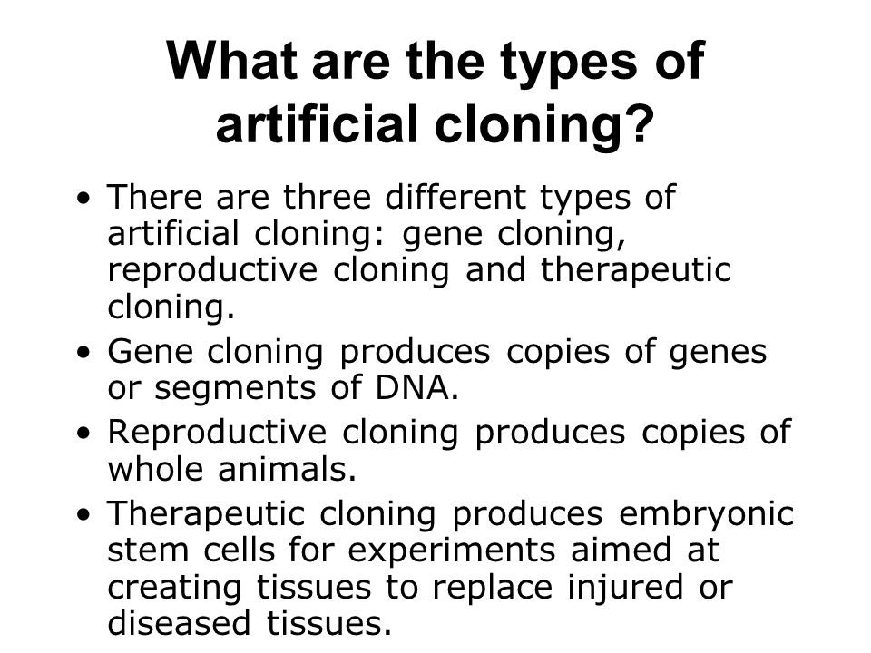 What are the types of artificial cloning