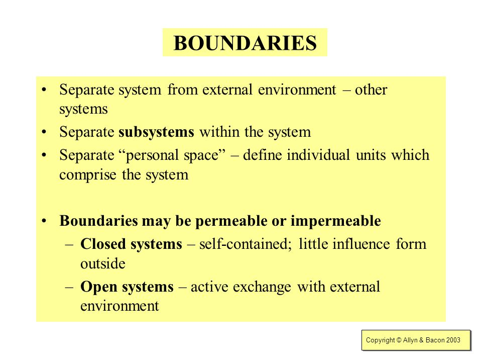BOUNDARIES Separate system from external environment – other systems