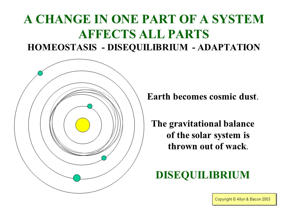 A CHANGE IN ONE PART OF A SYSTEM AFFECTS ALL PARTS HOMEOSTASIS - DISEQUILIBRIUM - ADAPTATION