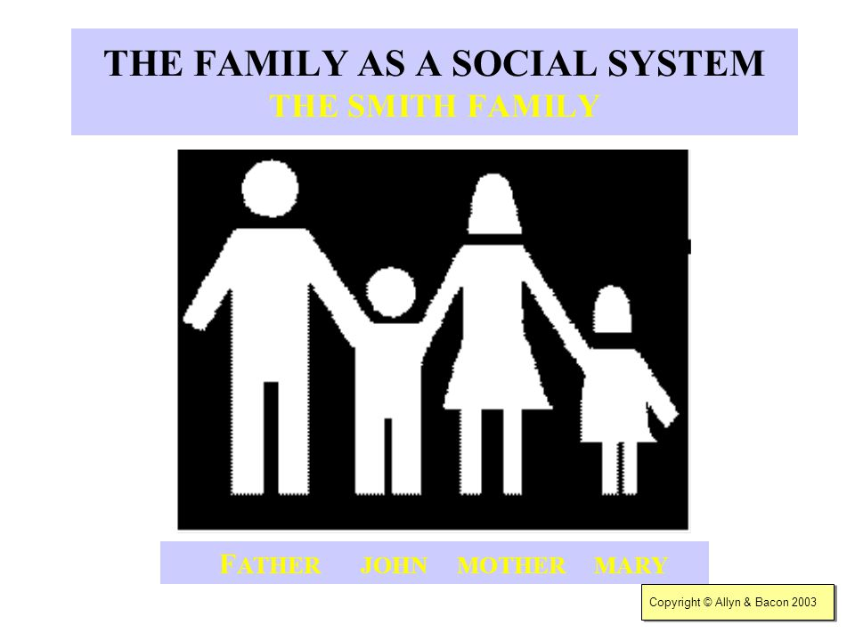 THE FAMILY AS A SOCIAL SYSTEM THE SMITH FAMILY