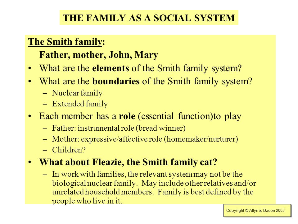 THE FAMILY AS A SOCIAL SYSTEM