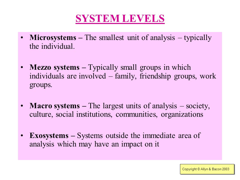 SYSTEM LEVELS Microsystems – The smallest unit of analysis – typically the individual.
