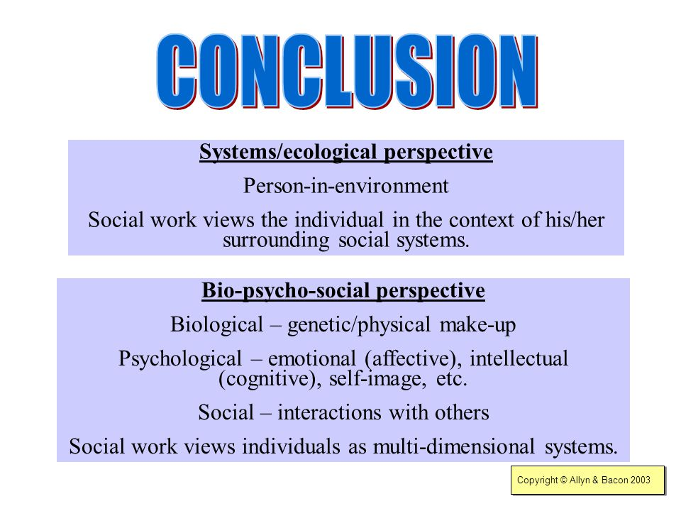 Systems/ecological perspective Bio-psycho-social perspective