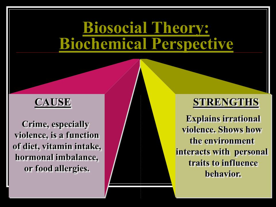 Biosocial Theory: Biochemical Perspective