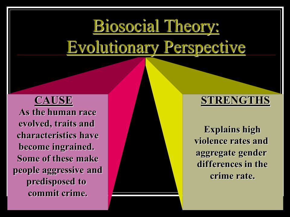 Biosocial Theory: Evolutionary Perspective
