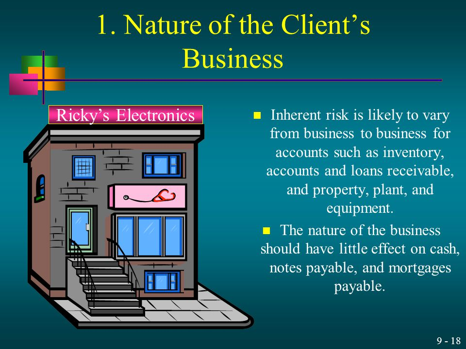 1. Nature of the Client's Business