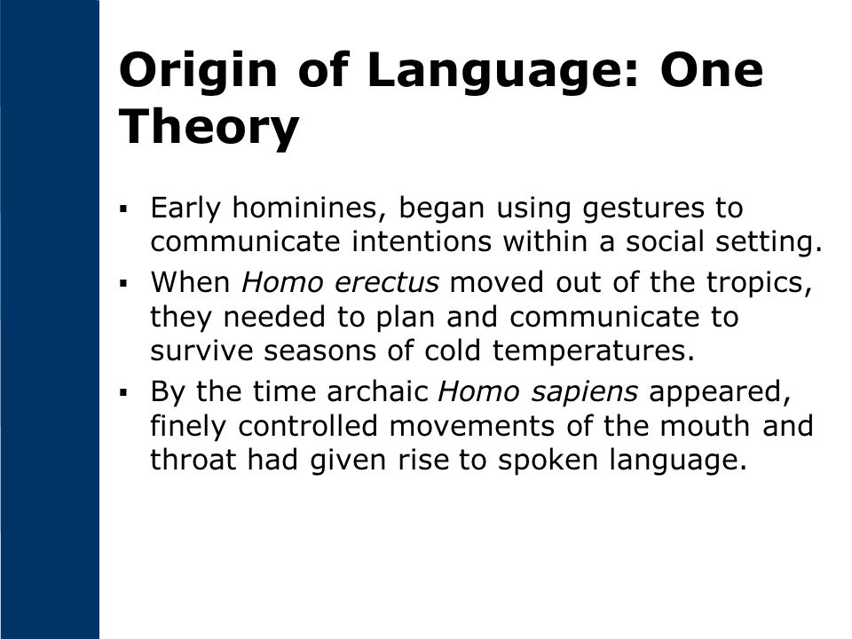 Origin of Language: One Theory