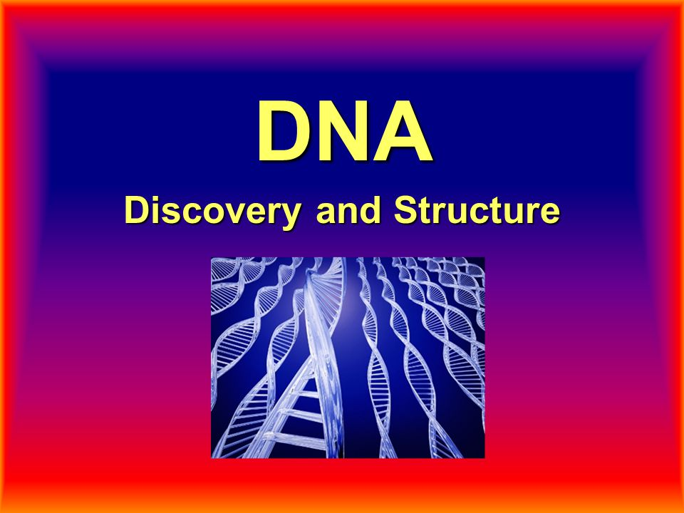 Discovery and Structure