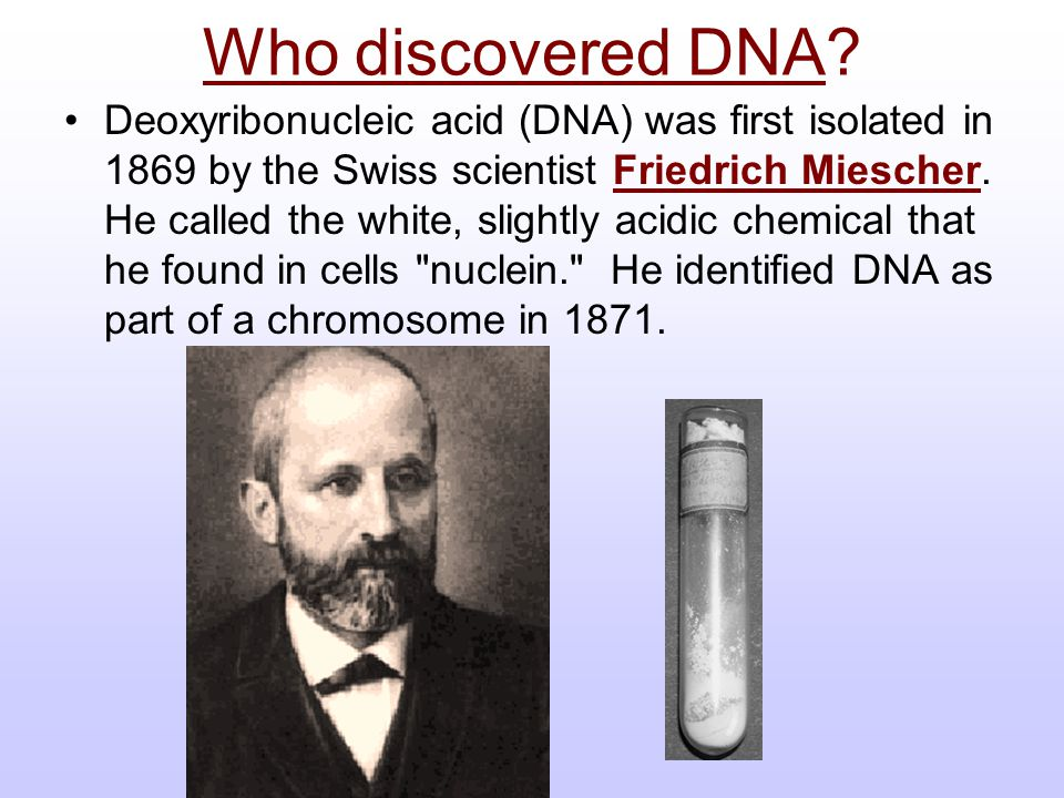 Who discovered DNA
