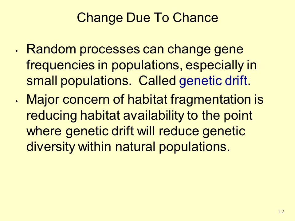Change Due To Chance Random processes can change gene frequencies in populations, especially in small populations. Called genetic drift.