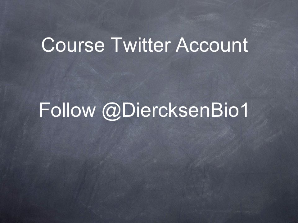 Course Twitter Account