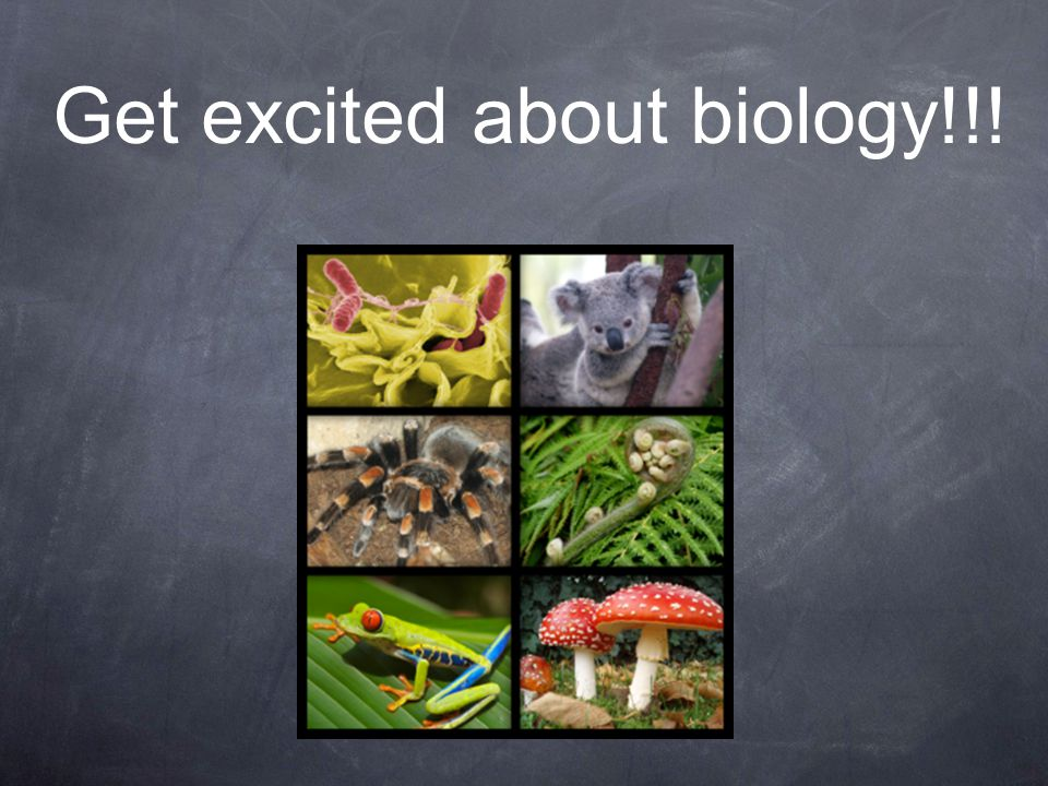 Get excited about biology!!!