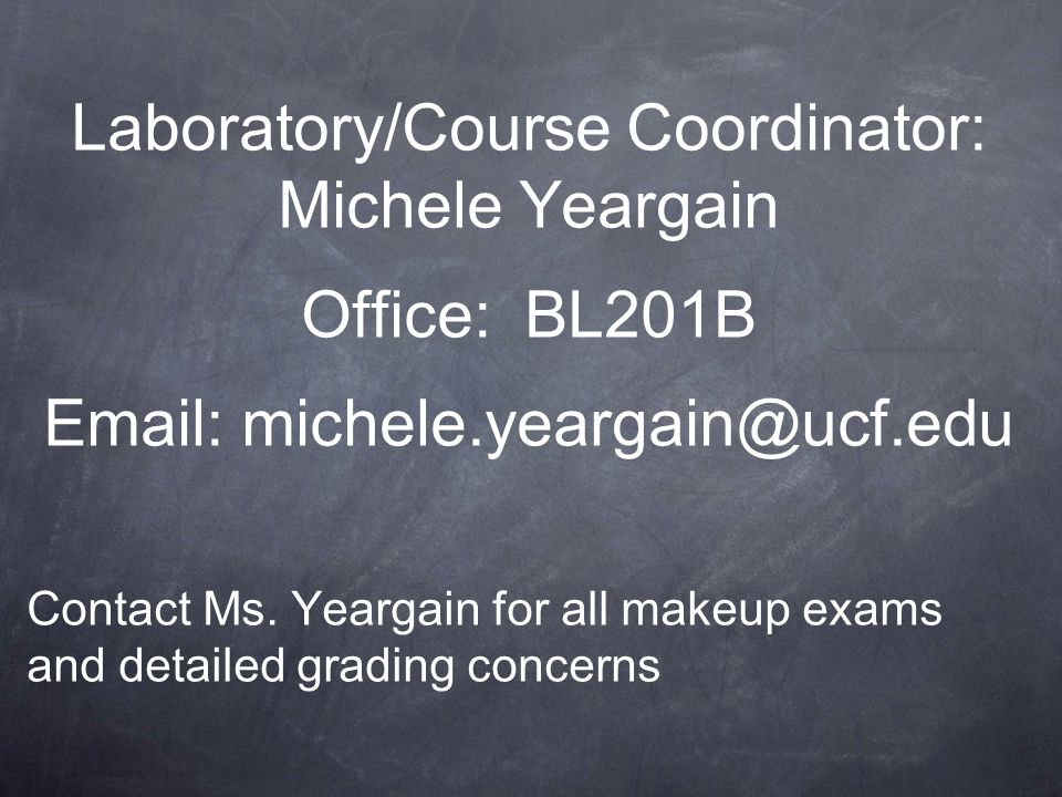 Laboratory/Course Coordinator: Michele Yeargain Office: BL201B