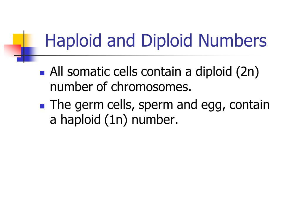 Haploid and Diploid Numbers