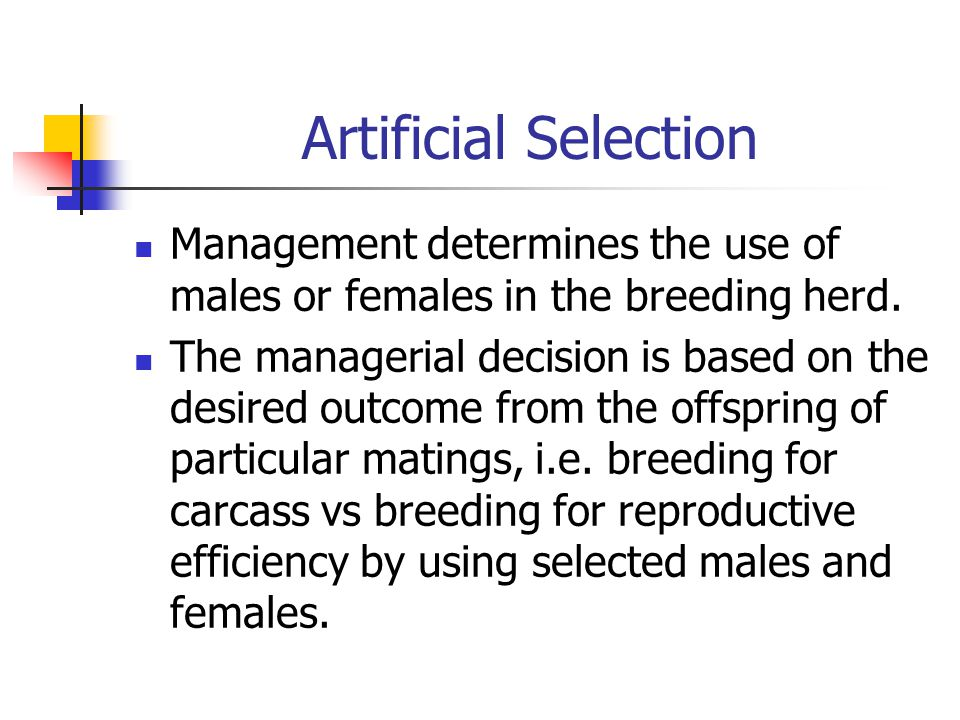 Artificial Selection Management determines the use of males or females in the breeding herd.