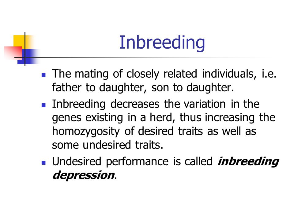Inbreeding The mating of closely related individuals, i.e. father to daughter, son to daughter.