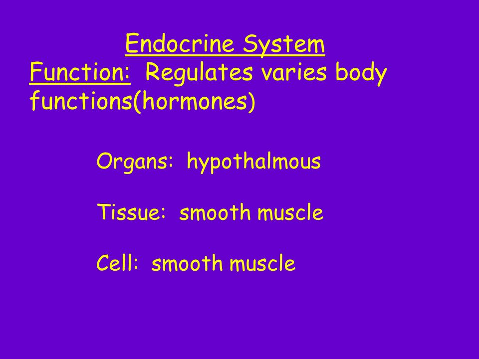 Function: Regulates varies body functions(hormones)