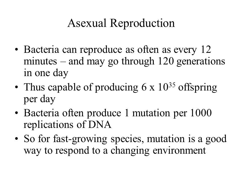 Asexual Reproduction Bacteria can reproduce as often as every 12 minutes – and may go through 120 generations in one day.