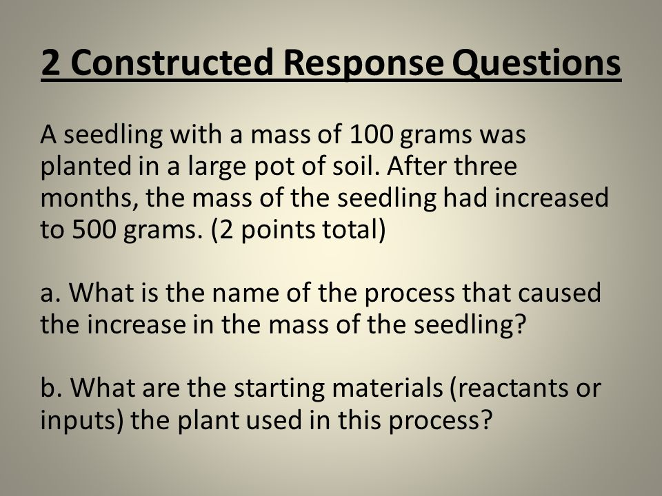 2 Constructed Response Questions