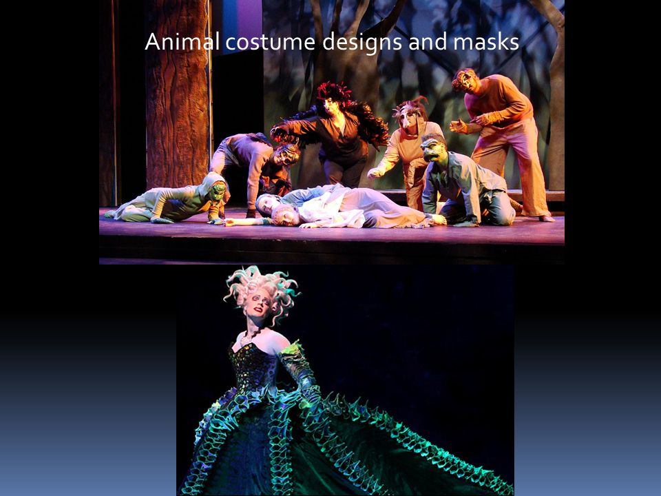 Animal costume designs and masks