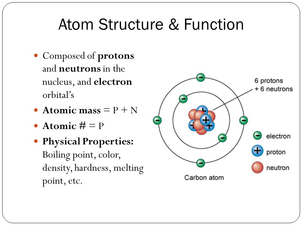 Atom Structure & Function