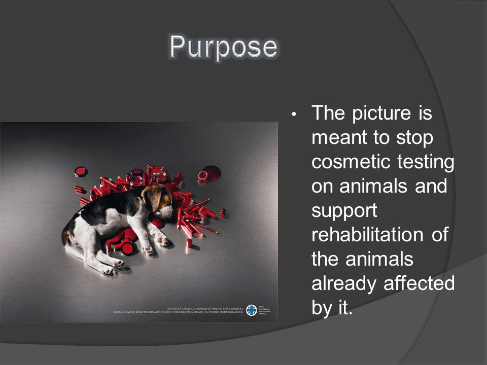 Purpose The picture is meant to stop cosmetic testing on animals and support rehabilitation of the animals already affected by it.