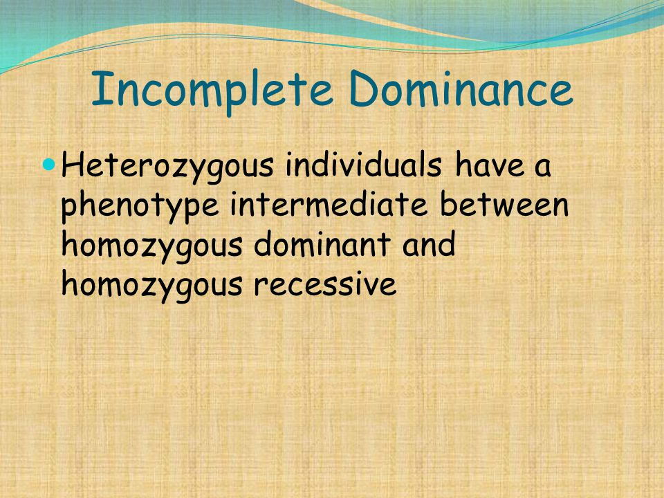 Incomplete Dominance Heterozygous individuals have a phenotype intermediate between homozygous dominant and homozygous recessive.