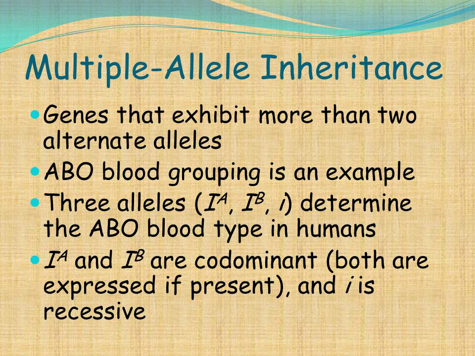 Multiple-Allele Inheritance