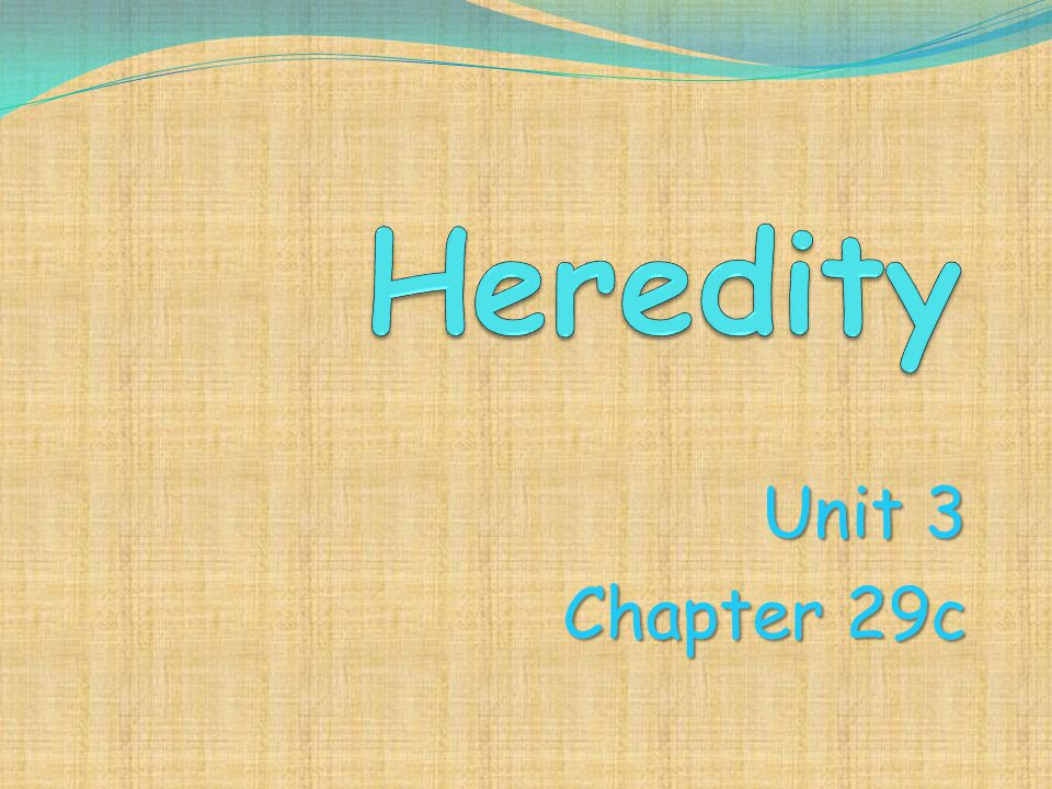 Heredity Unit 3 Chapter 29c
