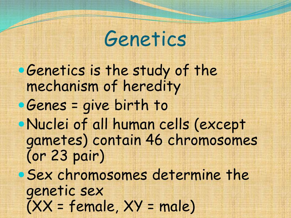 Genetics Genetics is the study of the mechanism of heredity