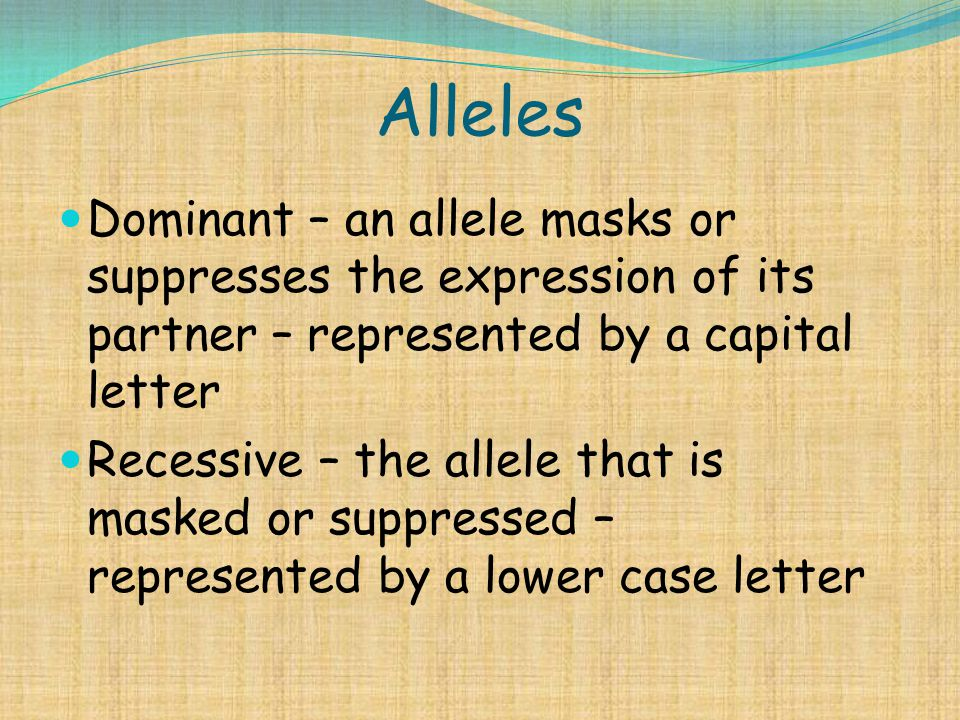 Alleles Dominant – an allele masks or suppresses the expression of its partner – represented by a capital letter.