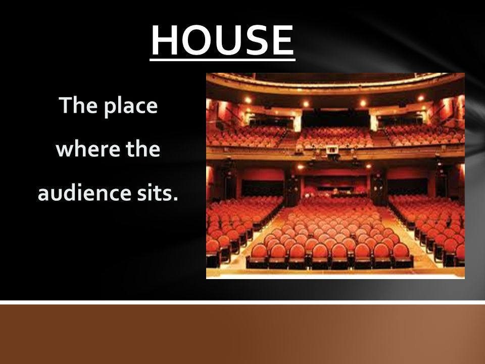 The place where the audience sits.