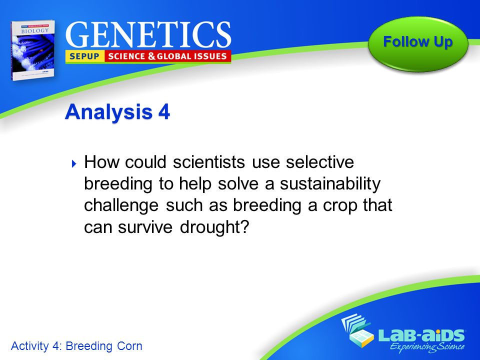 Analysis 4 How could scientists use selective breeding to help solve a sustainability challenge such as breeding a crop that can survive drought