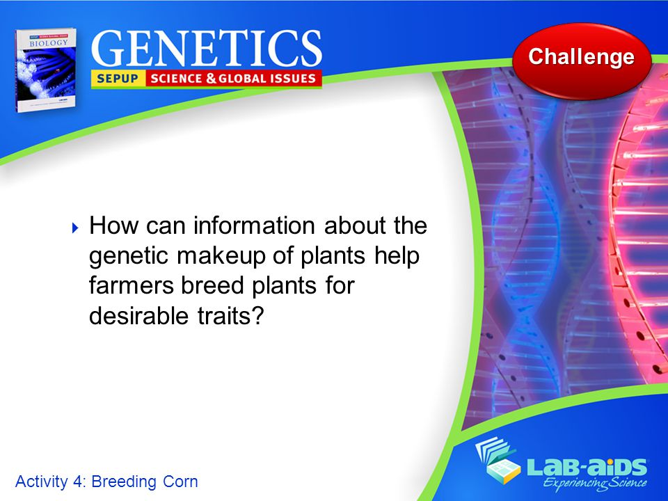 Challenge How can information about the genetic makeup of plants help farmers breed plants for desirable traits