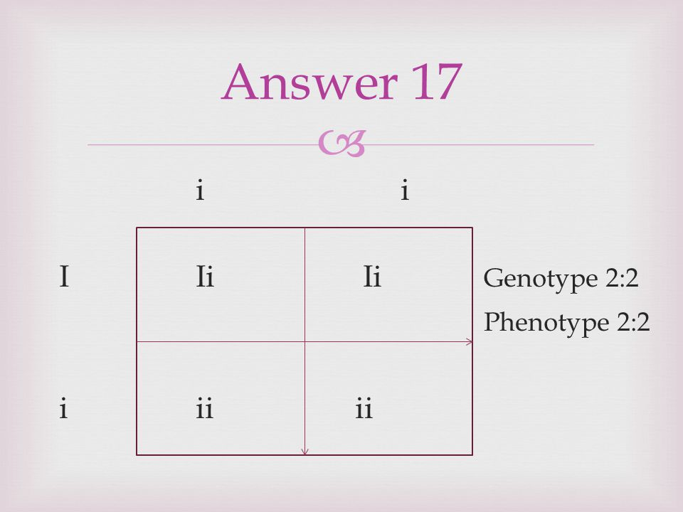 Answer 17 i i I Ii Ii Genotype 2:2 Phenotype 2:2 i ii ii
