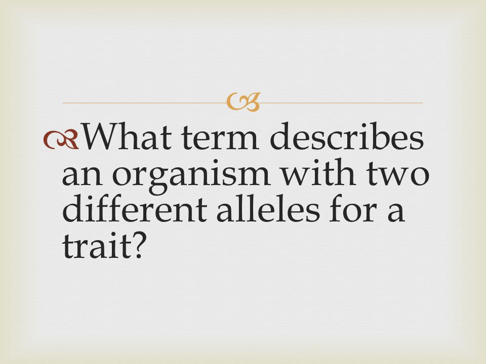 What term describes an organism with two different alleles for a trait